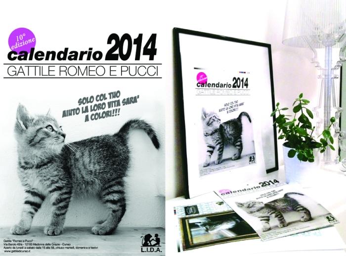 calendario gattile