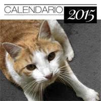 gattile_icona