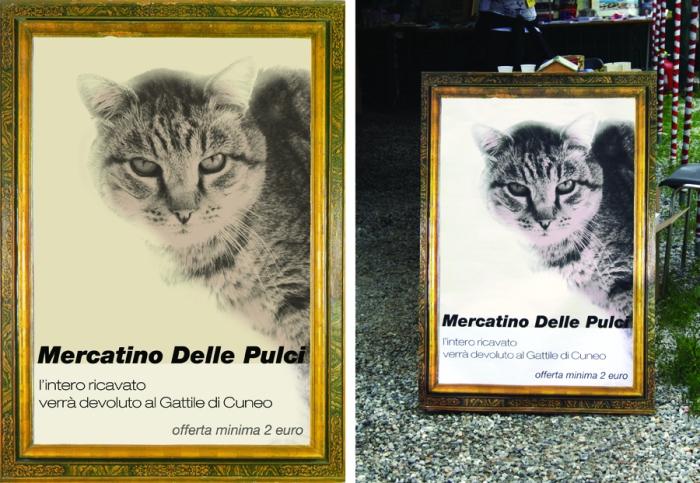 poster gattile